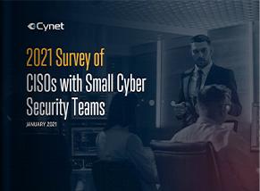 LP_193_254 2021 Survey of CISOs with Small Cyber Security Teams